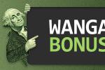 WANGA BONUS 从 Fort Financial Services